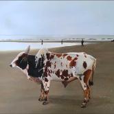 Resting bull(Vilande tjur)